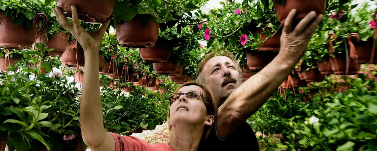 Article Cover of Man and Woman surrounded with potted plants in color